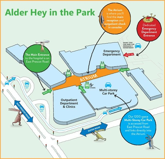 Alder-Hey-in-the-Park-map.jpeg