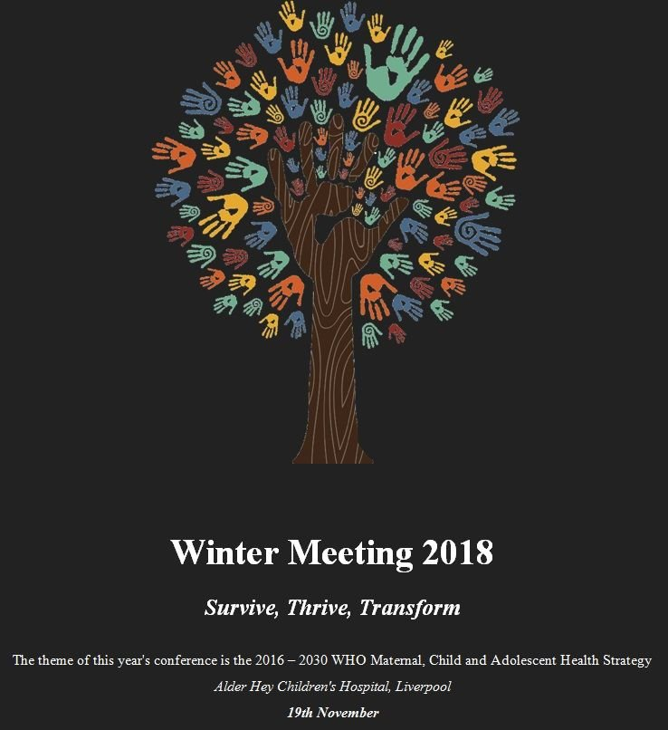 ICHG winter meeting image.jpg